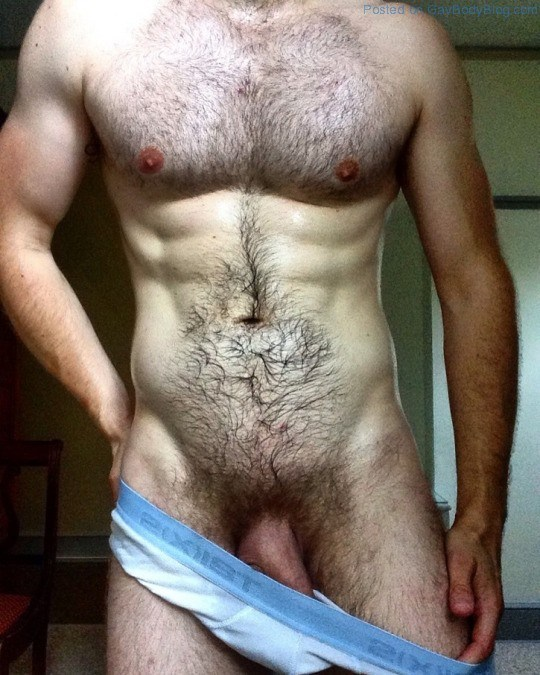 An-Anonymous-Hairy-And-Hung-Uncut-Hunk-6